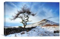 Winter at Roseberry Topping, North Yorkshire, Canvas Print
