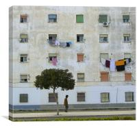 One of Those Arty Urban Pics, Canvas Print