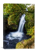 Snowdonia Waterfall, Canvas Print