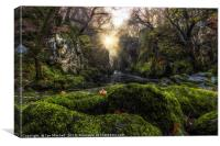 Fairy Glen, Canvas Print