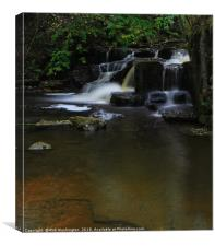 Hareshaw Linn Waterfall Northumberland, Canvas Print