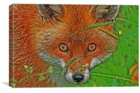 Fox in the grass, Canvas Print
