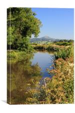 goytre warf The Monmouthshire & Brecon Canal, Canvas Print