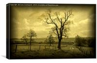 The Domesday Tree, Canvas Print