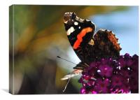 Flutterby, Canvas Print