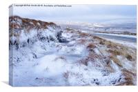 Upper Teesdale in Snow, Canvas Print