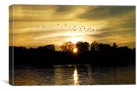 Dream of a Sunset, Canvas Print
