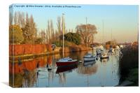 The River Frome in November, Canvas Print