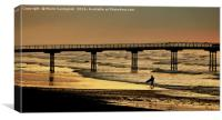 Another Day Another Surf Awaits, Canvas Print