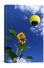 Balloon flying over sunflower, Canvas Print