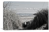 Way to the beach, Canvas Print