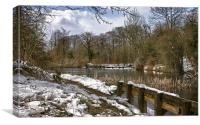 Park Lime Pits In Winter, Canvas Print