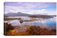 Colorful World of Rannoch Moor. Scotland, Canvas Print