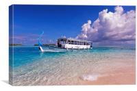 In Harmony with Nature. Maldives, Canvas Print