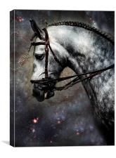 The Horse Among the Stars, Canvas Print