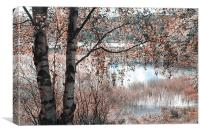 Loch Achray. Nature in Alien Skin, Canvas Print