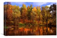 Autumn Reflections , Canvas Print