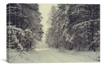 Blizzard in the Winter Woods , Canvas Print