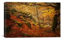 At the Rocky Edge, Canvas Print