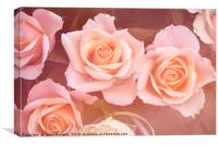 Creamy dreamy pink roses bouquet, Canvas Print