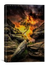 Phoenix Rising, Canvas Print