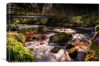 West Beck, Canvas Print