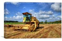 Combined Harvester, Canvas Print