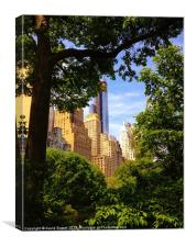 New York through central park, Canvas Print