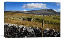 Pen Y Ghent, Yorkshire Dales, Canvas Print