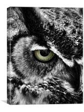 Watching You, Canvas Print