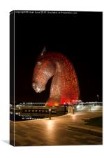 Kelpie at night, Canvas Print