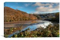 Trenant Woods on the West Looe River, Canvas Print