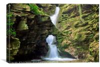 St Nectans Glen Waterfall at Thethevy nearTintagel, Canvas Print