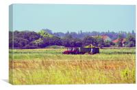 Tractor in the fields, Canvas Print