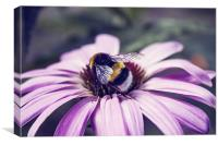 Bees Business, Canvas Print
