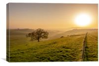 Misty South Downs Way, Canvas Print