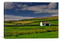 Stone Barns and Walls in Teesdale on Pennine Way, Canvas Print