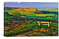 Danby Dale North York Moors, Canvas Print