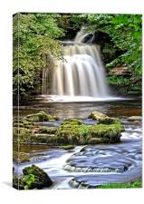 Cauldron Falls at West Burton, Canvas Print