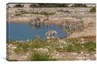 Namibian Waterhole at Etosha National Park, Canvas Print