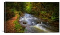 The Upper Clydach River in Pontardawe, Swansea, Canvas Print