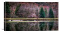 Glyncorrwg ponds South Wales, Canvas Print