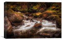 Textures of nature at Melincourt Brook, Canvas Print