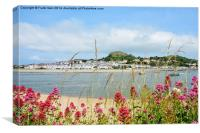 Across the river is Deganwy, Canvas Print
