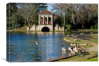 Geese swimming from Birkenhead park's Boathouse, Canvas Print