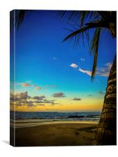 Palm Tree Sunset, Canvas Print
