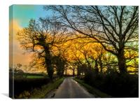 Evening after storm, Sussex, Canvas Print
