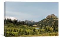 Looking Down at Tipsoo Lake from Naches Peak Loop, Canvas Print