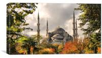 The Blue Mosque in Istanbul, Canvas Print
