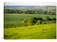 Ivinghoe on a May Evening, Canvas Print